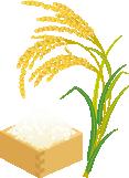 稲イラスト