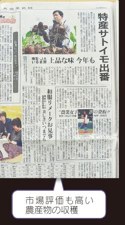 日本農業新聞 首都圏版 市場評価も高い農産物の収穫