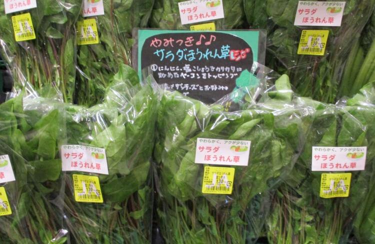 サラダ ほうれん草 【みんなが作ってる】 サラダほうれんそうのレシピ