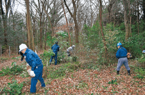 平地林の管理(JAいるま野 狭山地域管理課)